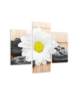 Multi-canvas 3x Flower zen stone